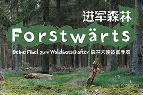 Forstwärts ⎪ 进军森林 ⎪ Forest Forward