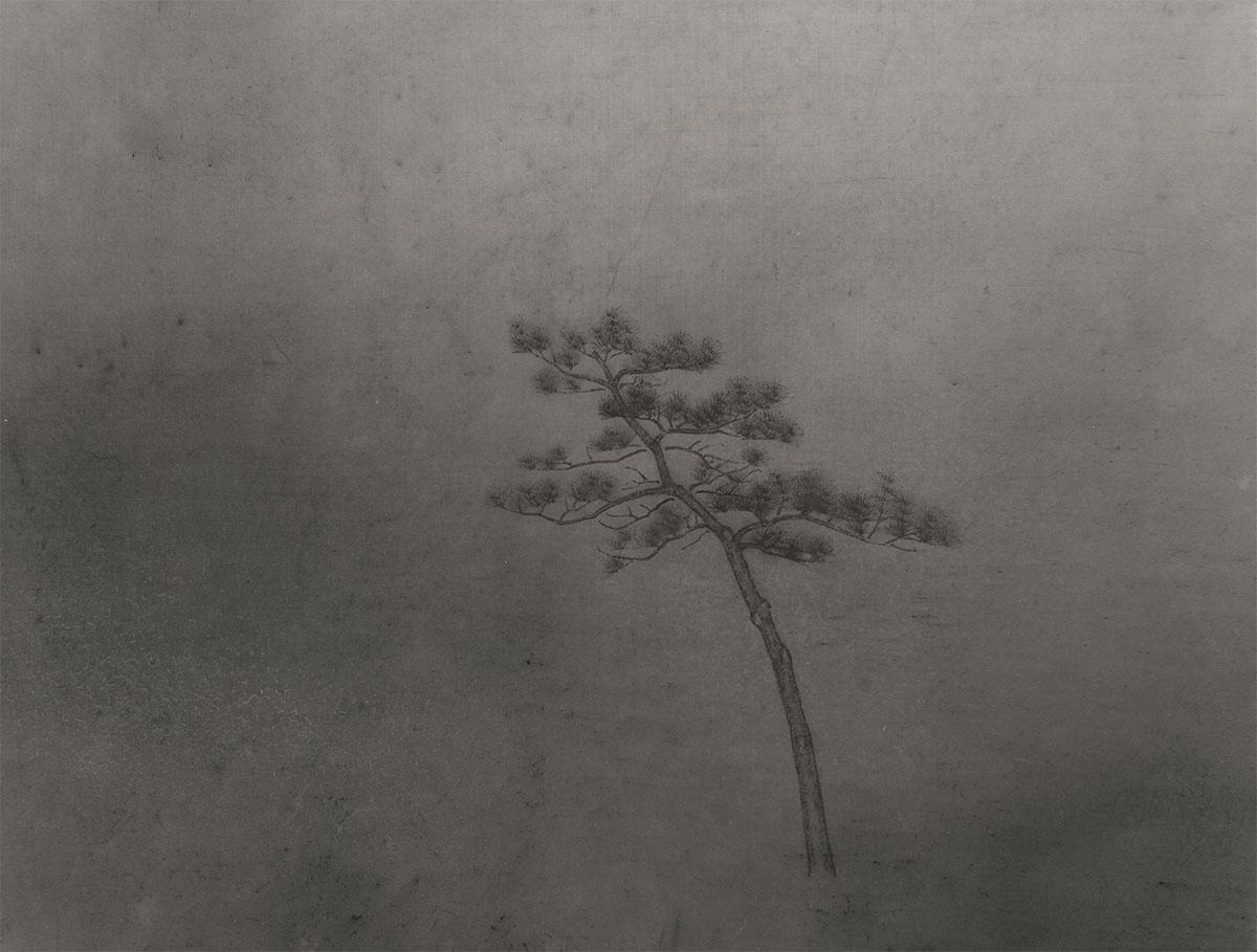 © Zhu Jianzhong 朱建忠
